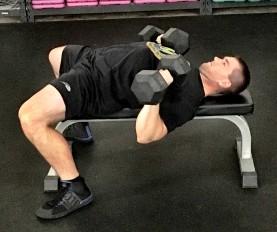 Dumbbell Press Exercise