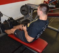 Seated Cable Rows 6