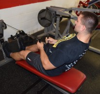 Seated Cable Rows 5