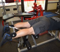 Hamstrings Lying Leg Curls 1