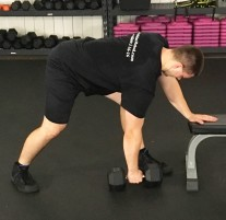 Dumbbell Row Exercise 2